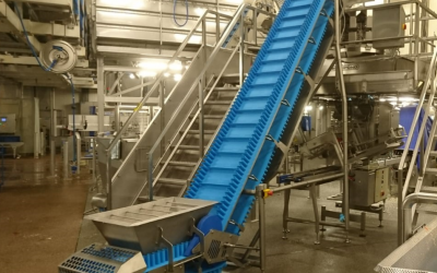 Hygienic Conveying Systems